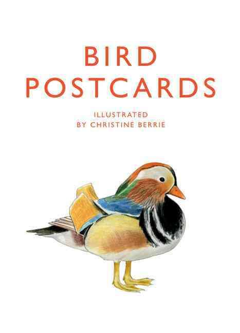 Bird Postcards By Berrie, Christine (ILT)